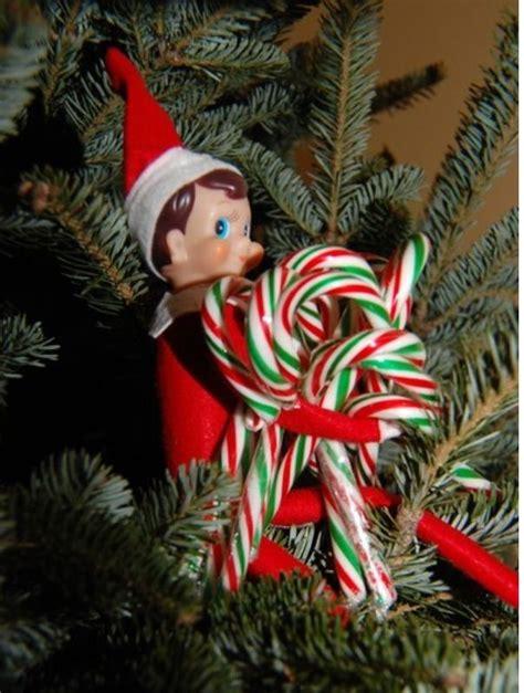 Elf On Shelf Candy Cane