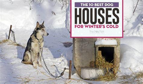 pin   dog houses