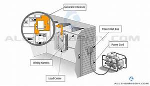 Wiring Diagram Main Box