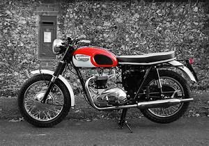 Triumph Bonneville T120 1966 Photograph by Mark Rogan