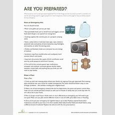 Disaster Preparedness  Worksheet Educationcom