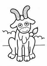 Goat Coloring Pages Goats Cute Printable Horns Sheet Toddler Sheets Billy Preschool Arts Crafts Projects Friendly Books Cutout Gruff Letters sketch template