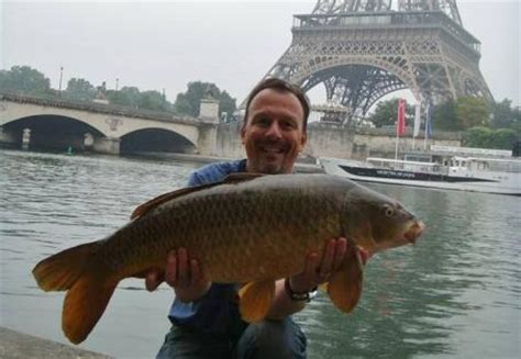 fish caught  eiffel tower paris anglers mail