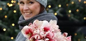 Blumen Zu Weihnachten : blumen zu weihnachten weihnachtsgeschenke euroflorist ~ Eleganceandgraceweddings.com Haus und Dekorationen