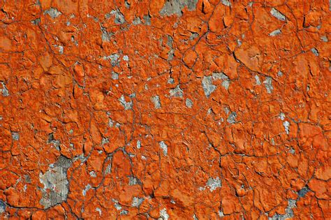 orange paint texture flickr photo sharing