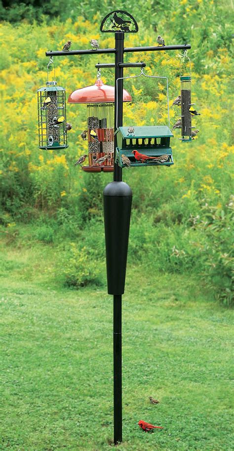 bird feeder poles duncraft best selling squirrel proof squirrel stopper