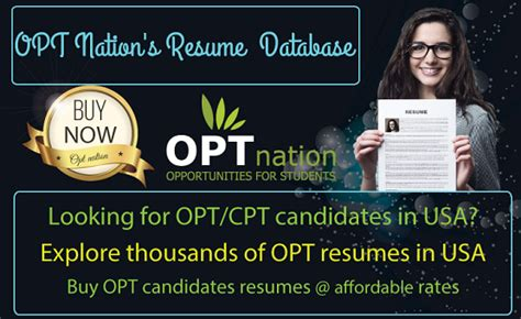 Opt Resumes In Usa client service representative i in chester va opt