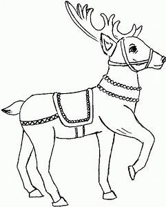santa and reindeer coloring pages printable - get this reindeer coloring pages online 67381