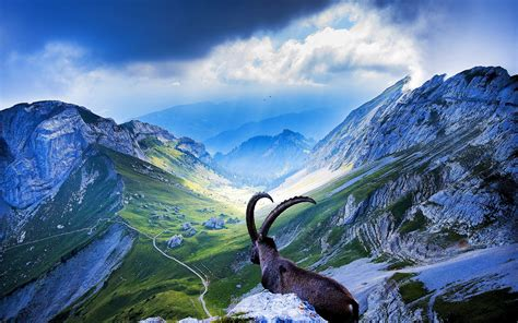 Switzerland Wallpapers, Pictures, Images