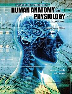 Guide For The Introductory Human Anatomy And Physiology