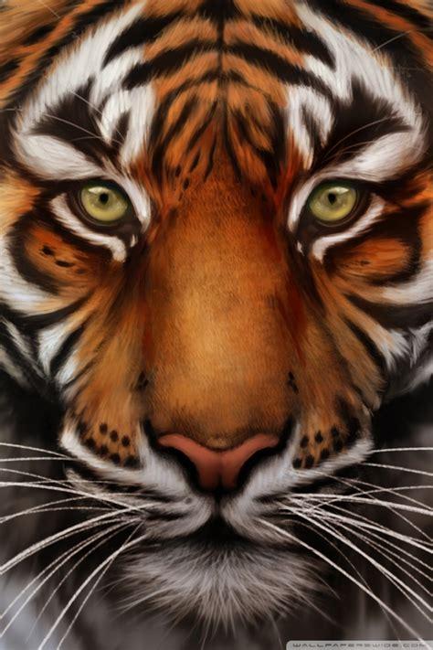 Save The Tiger Desktop Wallpaper For Ultra