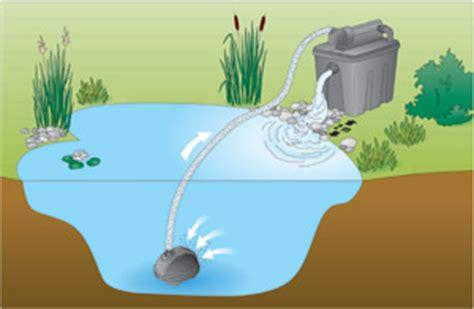 systeme de filtration pour bassin exterieur filtre uvc pour bassin d ornement