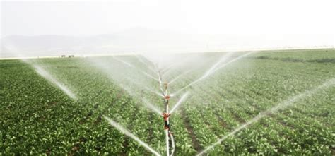 types  irrigation systems
