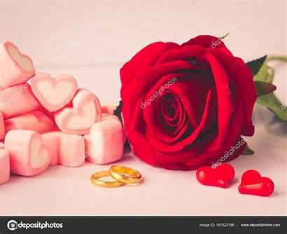Rose Romantic Golden Roos Rode Rings Liefde