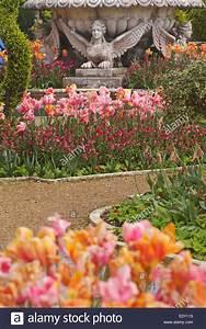 Tulpen Im Garten : bunte tulpen im garten mit skulpturen im osborne house ~ A.2002-acura-tl-radio.info Haus und Dekorationen