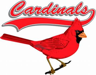 Cardinals Louis St Clipart Baseball Mlb Tickets
