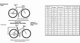 Oohub Image How To Determine Bike Size For Men