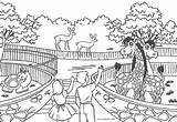 Zoo Coloring Printable Preschool Children Sheets Preschoolers Cage Superlative Template Imwithphil Put Pdf sketch template
