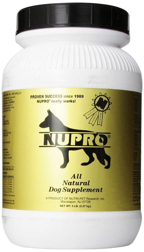 popular dog supplements top dog tips