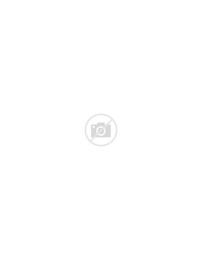 Penguin Club Loading Animations Shoveling Cool Clubpenguin