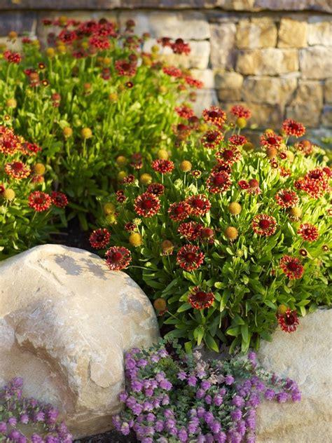Garten Anlegen Tipps by Pflegeleichten Garten Anlegen 3 Tipps F 252 R Hobbyg 228 Rtner