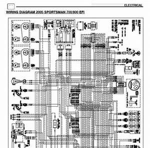 2005 Polaris Sportsman 700 Parts Manual