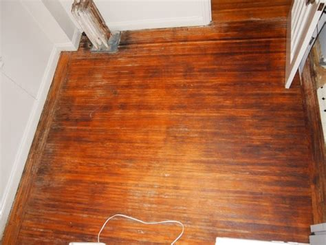 what is the best wood for kitchen cabinets discovering wood floors linoleum 1920 s building 9938