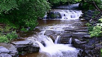 Stream Cool Wallpapers Water Flow Endless Trees