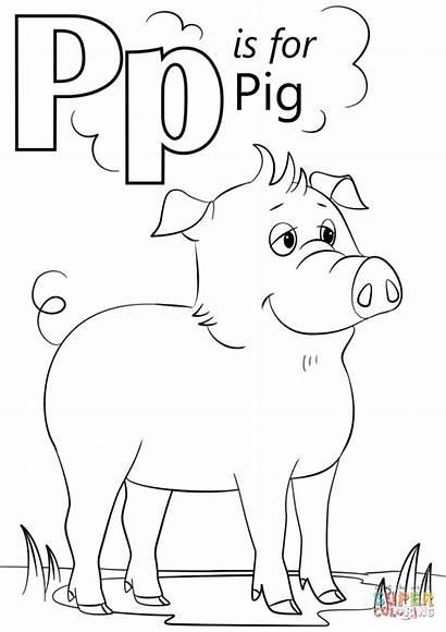Letter Coloring Pig Pages Printable Alphabet Preschool