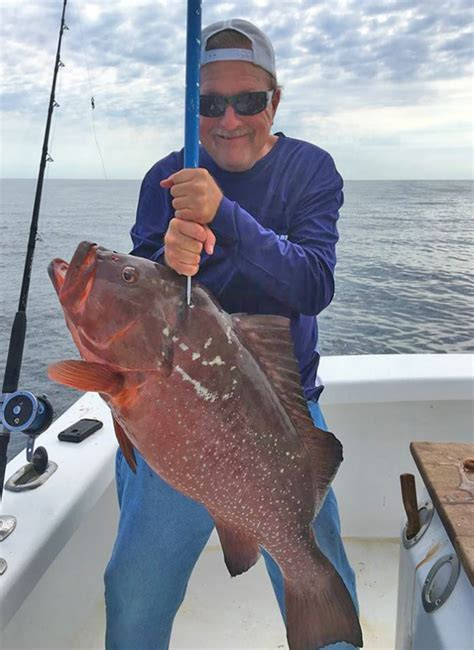 grouper record nc state catches fisherman fishing dean saltwater pointclickfish robert