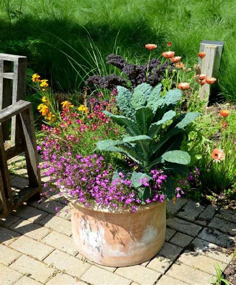 container gardening vegetables best vegetables to grow in pots most productive