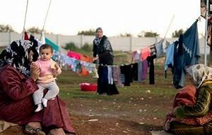 UN: 90 percent of Egypt's Syrian refugees living in ...