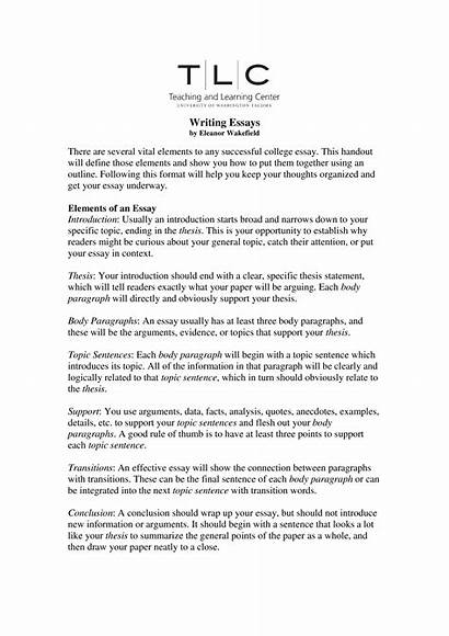 Essay College Start Sample Outline Examples Template