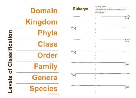stem club scientific classification and dichotomous varga