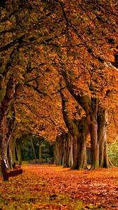 Fall Scenery iPhone 6 Wallpaper 18762 - Nature iPhone 6 ...