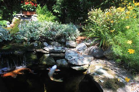 best ponds koi ponds and water gardens make for backyard bliss boston magazine