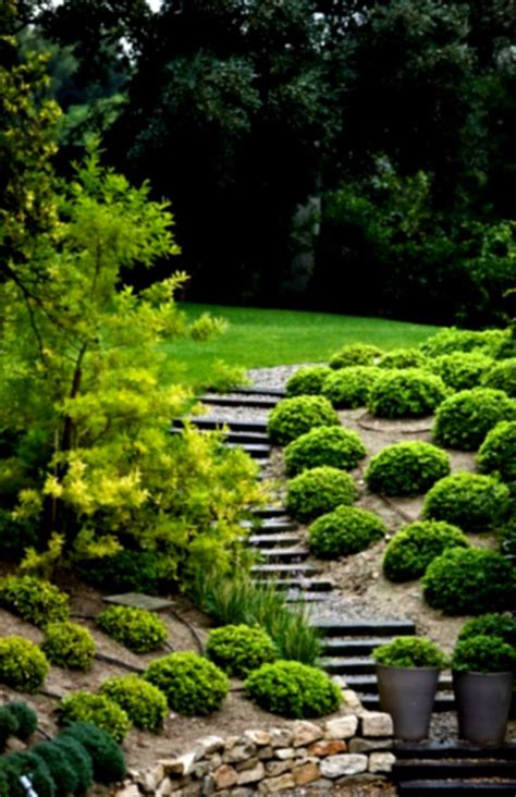 hill landscaping ideas pictures japanese inspired landscape design in berkeley dwell landscaping ideas on a steep hill hillside