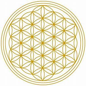 Blume Und Leben : 25 best ideas about lebensblume on pinterest buddhismus ~ Articles-book.com Haus und Dekorationen