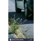 Odds Stock Photos & Images  Alamy