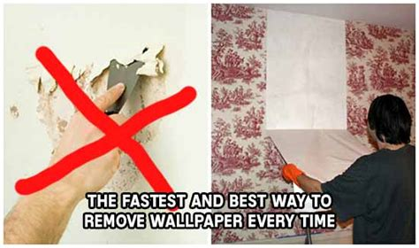 the fastest and best way to remove wallpaper every time iseeidoimake
