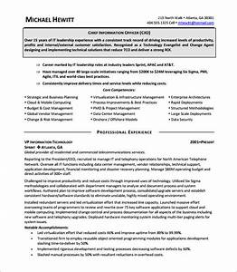 chief executive officer resume template 8 free word With ceo resume pdf