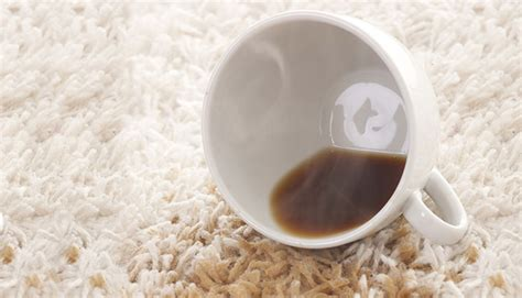 how to get coffee out of carpet how to get coffee stains out of carpet