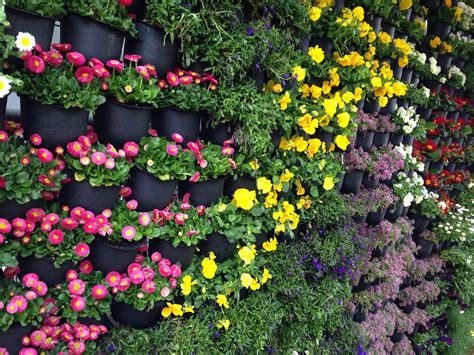 Janna Schreier Garden Design