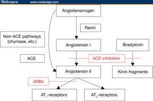 Ace Inhibitor and ARB Mechanism
