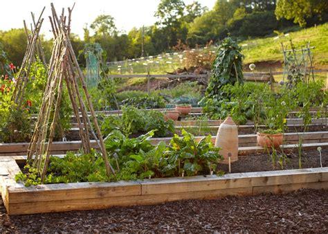 kitchen garden tips gallery tudor farmhouse