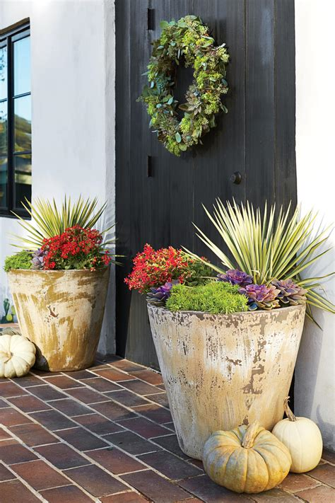 Best 31 Ideas For Fall Planters  Garden Pics And Tips
