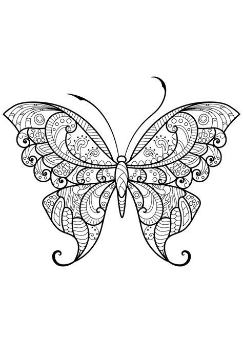 disegni da colorare per adulti farfalle insetti 71784 farfalle e insetti disegni da colorare