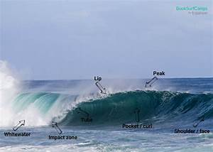 Surfing 101  How To Read A Wave