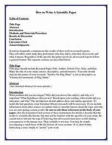 statement of purpose mfa creative writing remembrance day primary homework help thesis writers in nairobi