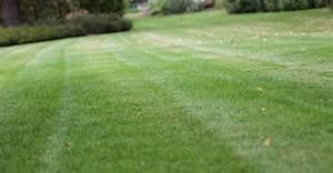 Semer Gazon Periode : septembre un bon mois pour semer votre gazon ~ Melissatoandfro.com Idées de Décoration